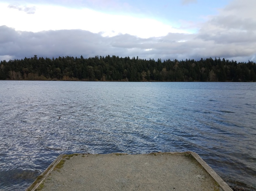 Pciture of Seward Park in Seattle.