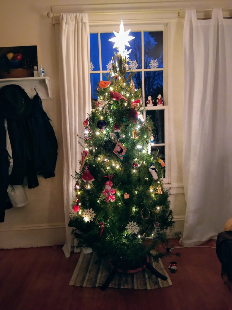 Christmas tree 2020.