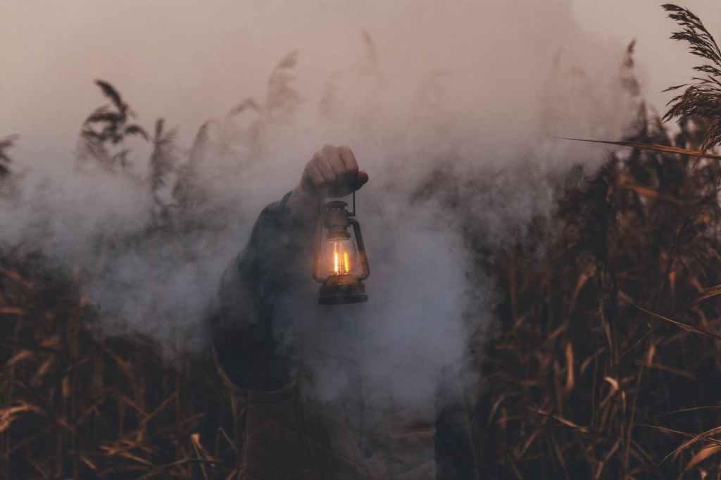 A person holding a lantern in a smokey corn field.